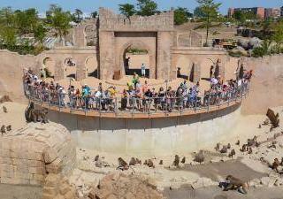 WILDLANDS Adventure Zoo Emmen6
