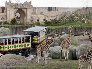 WILDLANDS Adventure Zoo Emmen9