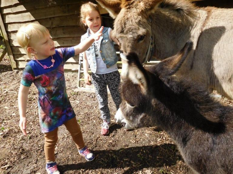 Kinderboerderij Hagerhof (3)