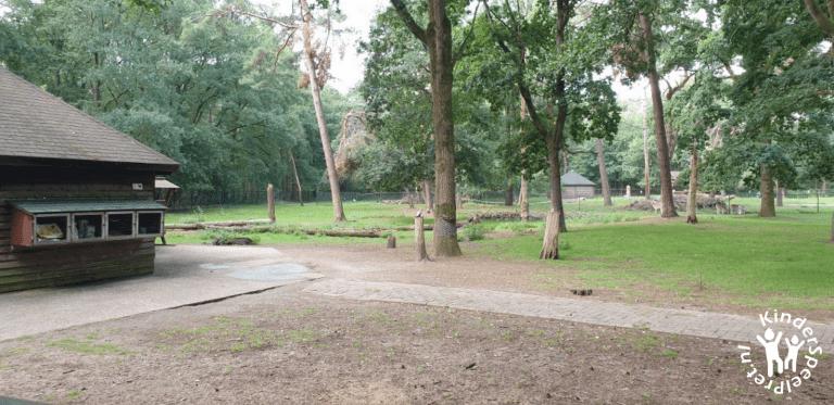 Bospark Bakel Kabouterbos (10)