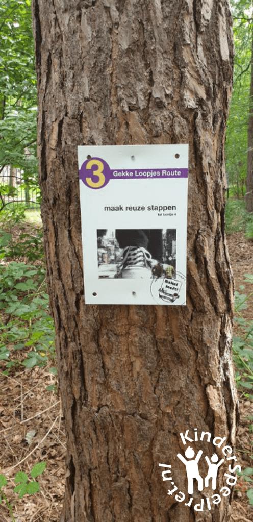 Bospark Bakel Kabouterbos (17)
