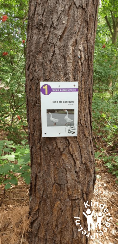 Bospark Bakel Kabouterbos (18)