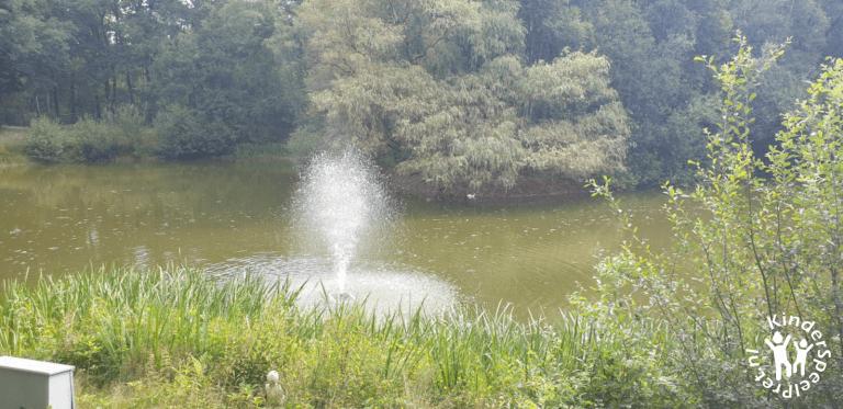Bospark Bakel Kabouterbos (8)