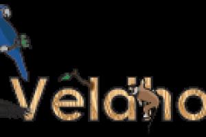 Logo-ZooVeldhoven